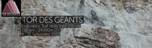 2013 : Tor des Géants, Marathon des Sables, Défi de l'Oisans, Lantau 50, Grand Duc…