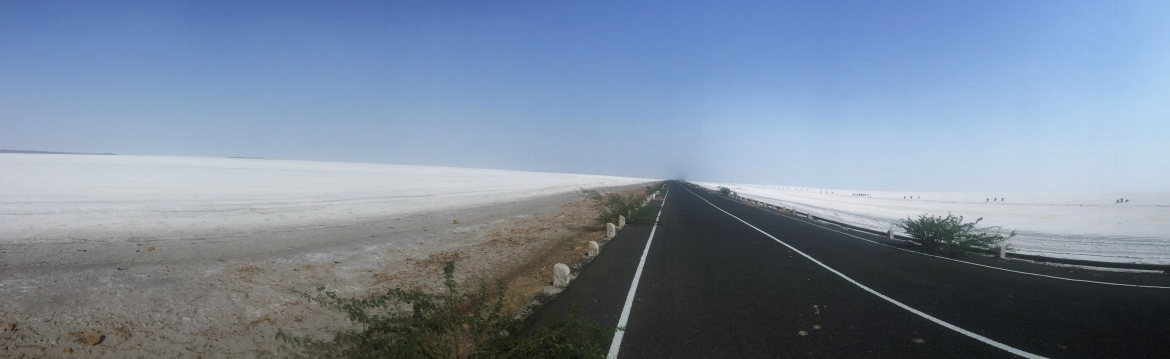 Winning The Rann of Kutch 42km, 2015 February 7th, India