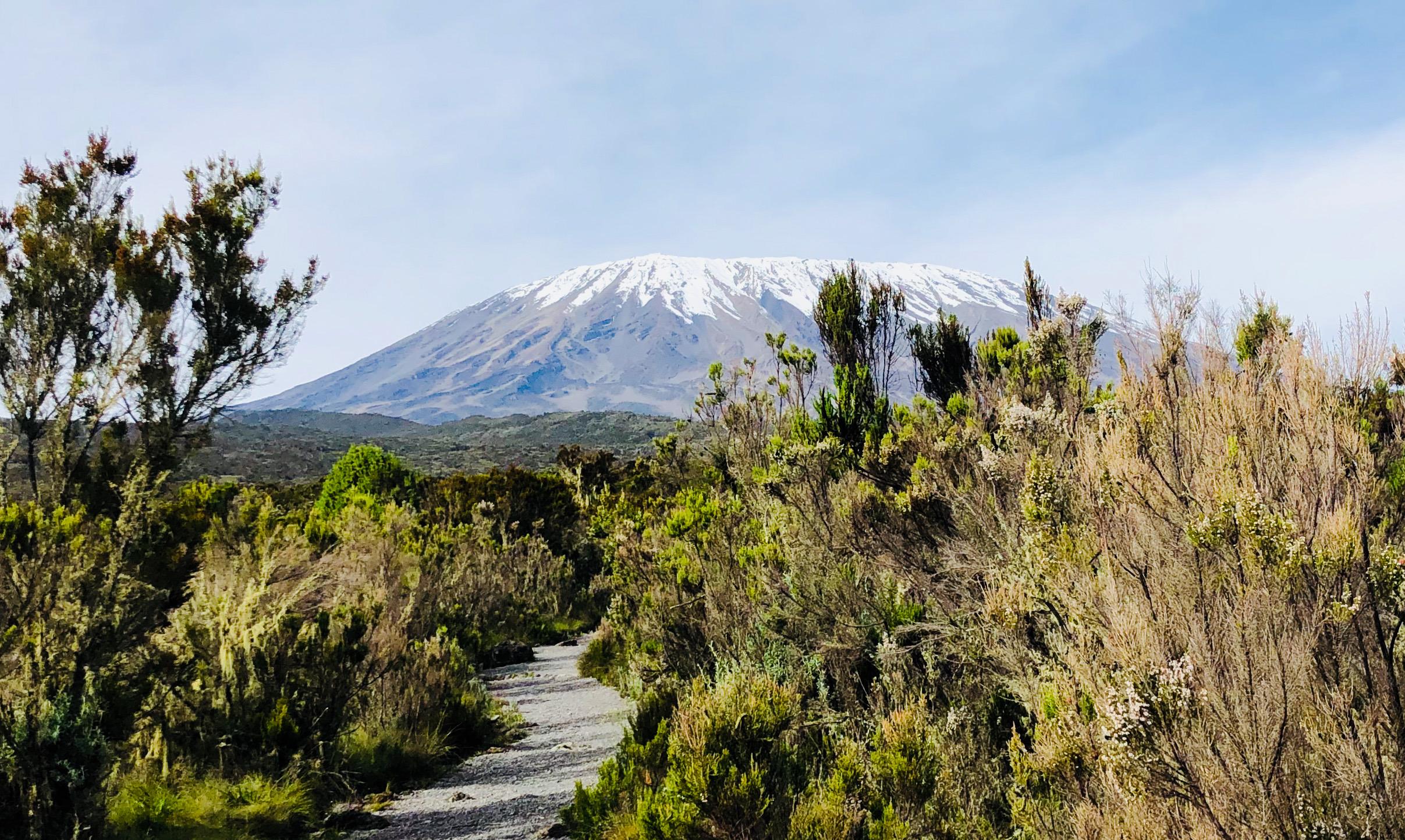 Kilimandjaro snow…